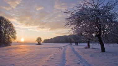 Winterlandschaft Lorsch